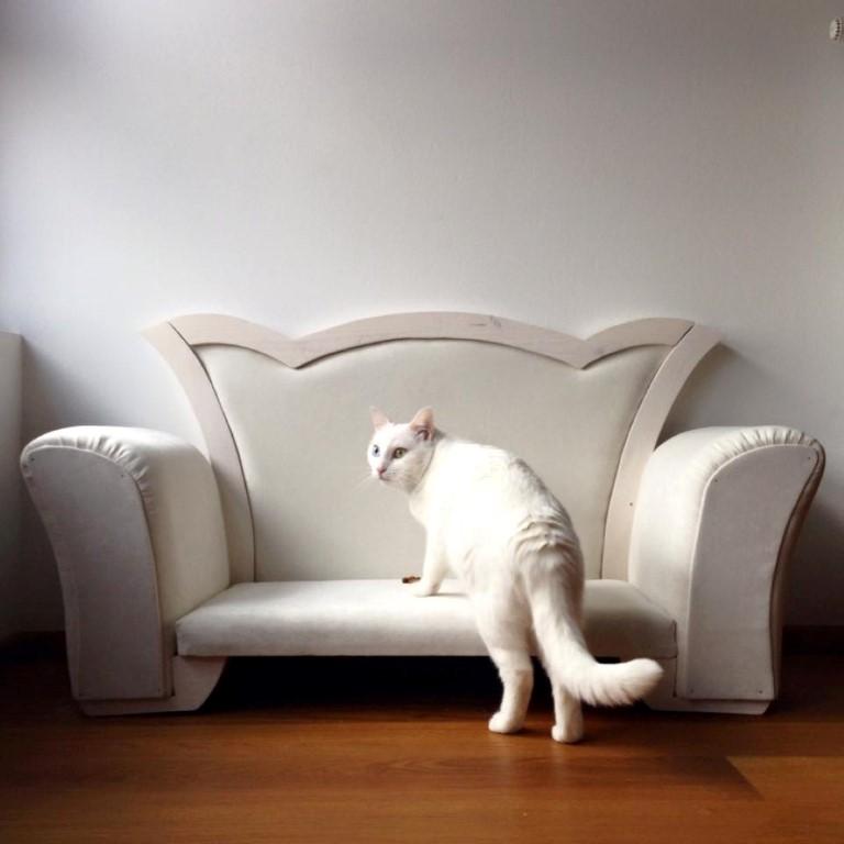 Mačje pohištvo